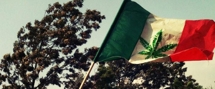"In Mexico, smoking marijuana has become a ""human right"""