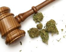 Brief history of legality of marijuana.