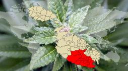 Cannabis law in Malta